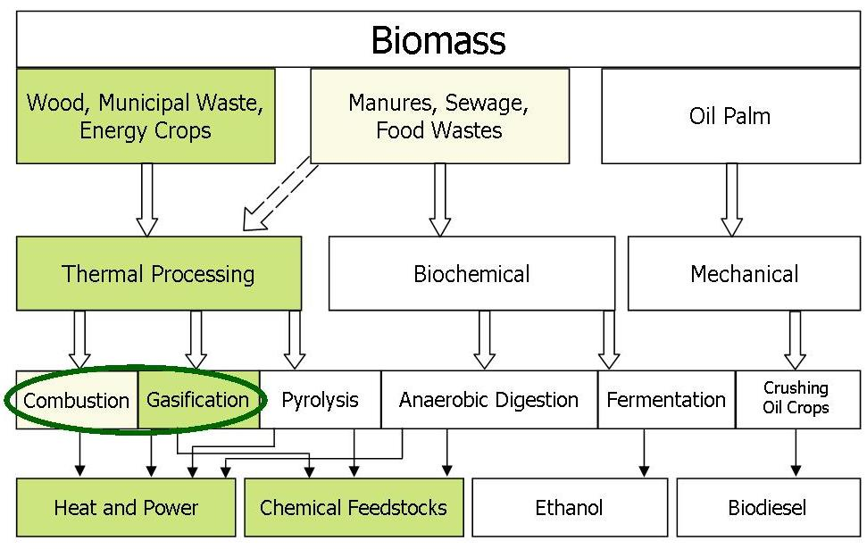 110405 Bioenergy conversion routes v3 inc sewage and combustion
