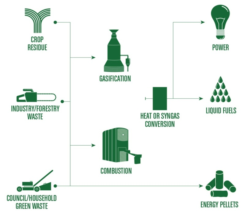 Biomass Process Map